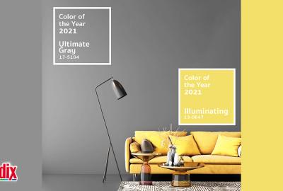 Кои са цветовете на 2021 г. и как да ги поканим в дома си?